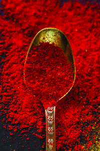 spoon with paprika